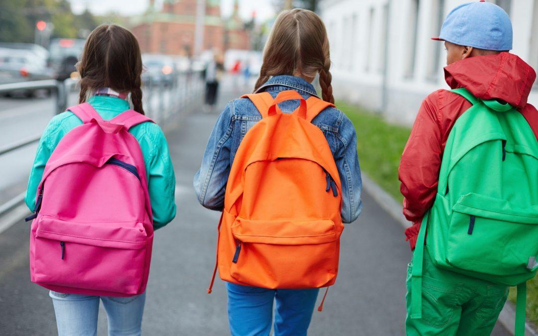 Historia social vuelvo a la escuela