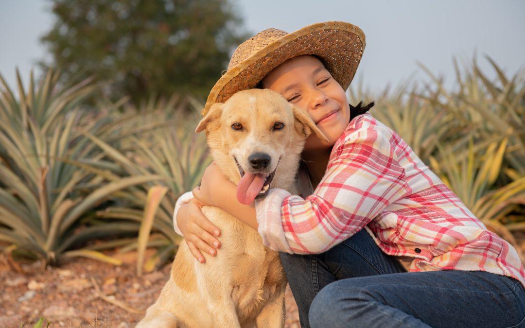 Intervención con perros mejora las habilidades adaptativas y comunicacionales en niños con TEA
